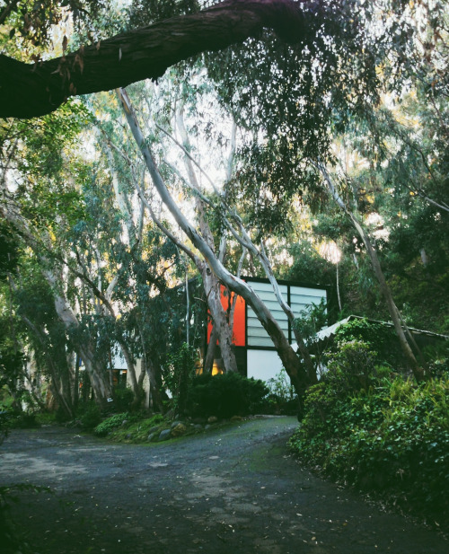 The Eames House, Case Study House #8