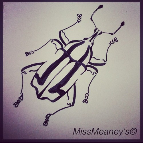 Quick felt tip pen doodle 🐞 #beetle #insect #pen #blackandwhite #illustration #sketch #art #artwork #missmeaneys