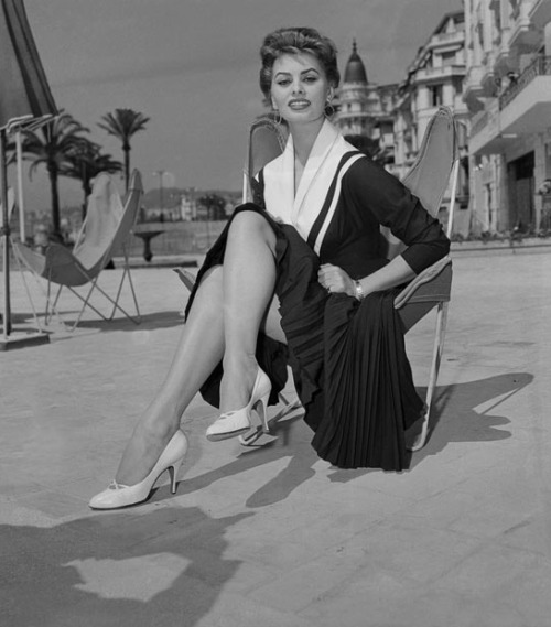 vintagechampagnefever:  Sophia Loren at the 1955 Cannes Film Festival