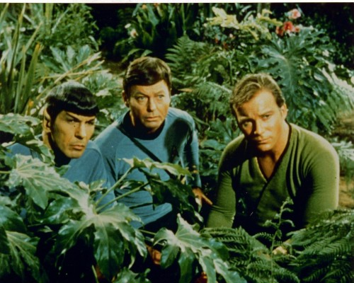 Star Trek.Spock,McCoy and Kirk.