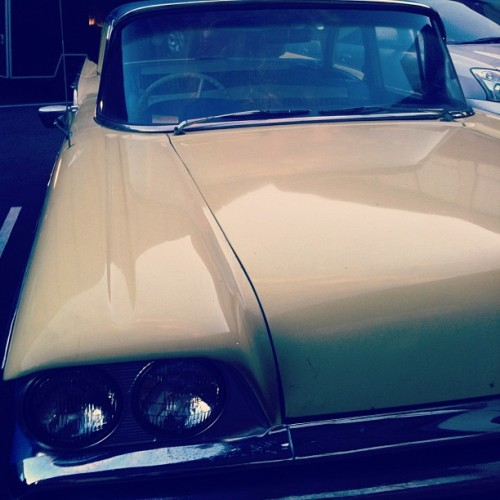 Good morning ballarat #retro #rockabilly #car #bbeat #ballaratbeatrockabillyfestival