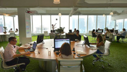 Grass replaces carpet in this Singapore office by Spencer Ogden  http://www.lostateminor.com/2013/04/16/spencer-ogdens-funky-new-office-in-singapore/