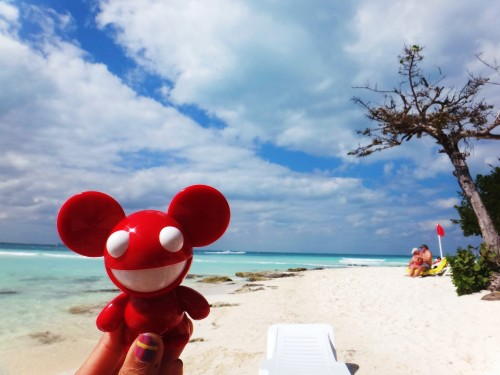 travel companion!  Cancunmau5