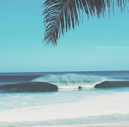 beach hawaii love summer palme travel wave send me there