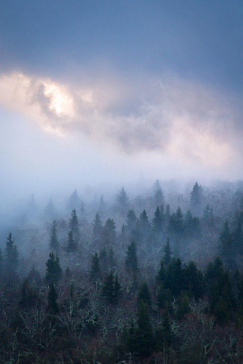 methexys:  The Air up There… (by Rob Travis)