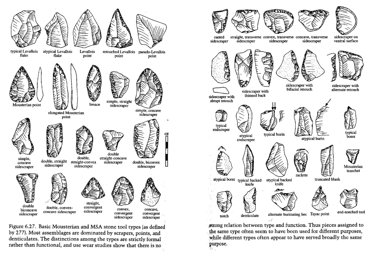 archaeoillustration:   What is Mousterian? Dated from 300,000 BP - 30,000 BP First examples found in Le Moustier rock shelter, France Recognised throughout Europe, Near East, and Africa Handaxes, racloirs, flakes, and points; sometimes Levallois technique Associated with Homo neanderthalensis  Image source unknown?