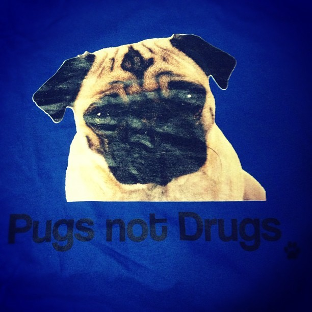 My boss just gave me this t-shirt!! :) Bosco isn't a pug, but it's still AWESOME!! Ha ha!! Thanks guys!!! (at ModernMom)