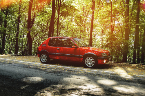 French Style on Flickr.Via Flickr: Peugeot 205 GTi © All rights reserved.Like me on Facebook