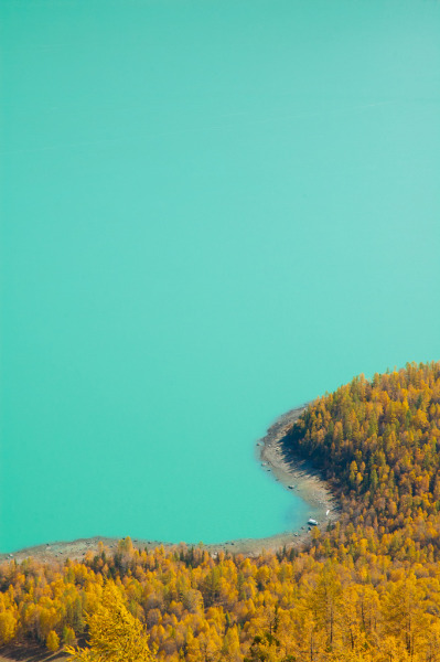 touchdisky:  Kanas Lake, China by Poorfish