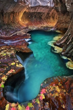 janetmillslove:  Moment Emerald Pool at Subw Love