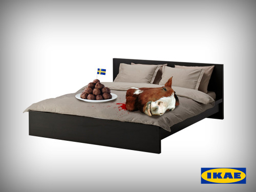 Ikea Gudfadern http://trutv.com/Ikea-horse-balls  Kyle Moriwaki made my dumb dreams come true w/ his quick P-shop action.