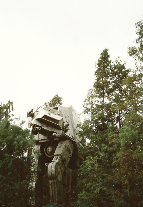 thekidwhonevergrowsup:  viscoid:  d-artle:  viscoid:  is that a transformer?   please tell me you're joking  It's not a transformer?  It must be a transformer. but what if it is a Decepticon?