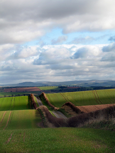 visitheworld:  Looking towards the Cheviot Massif, Scottish Borders (by billtam).