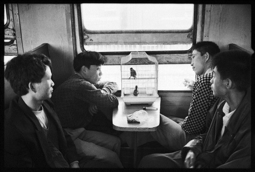 1/2 Wang Fuchun's photograph of people on trains, China (via Amusing Planet)