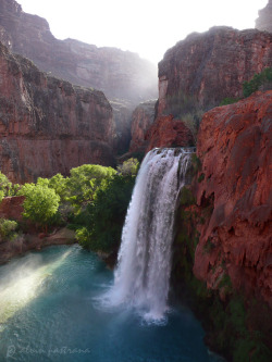 unwrittennature:  morning at Havasu Falls (by alvin pastrana)