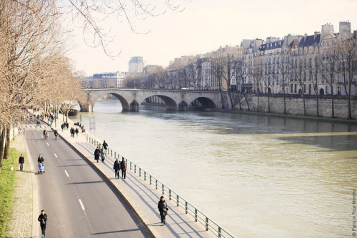 | ♕ |  Almost spring - Seine, Paris  | by © Carin Olsson | via ysvoice