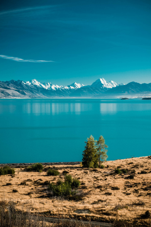 touchdisky:  Mt. Cook, New Zealand by edwardxhu