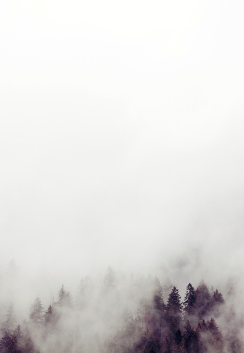 0rient-express:  Misty In Austria | by Laura Jayne Austin | on Tumblr.