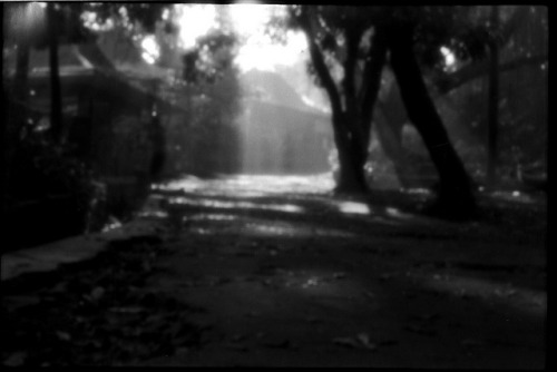 [Babakan Siliwangi] April 2013 on Flickr.Via Flickr: Diana F+ - pinhole - Lucky SHD100 @400 - Agfa R09 stand development 1hrs