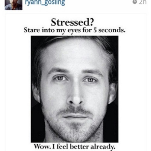 Lol my life right now and for the next two weeks. #RyanGosling #countdowntosummer #saveme