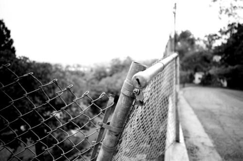 the end of this fence.