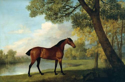 cavetocanvas:  George Stubbs, Bay Hunter by a Lake, 1787