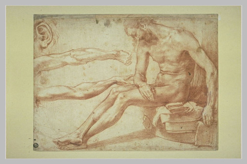Study for a Dead Christ, the Louvre; by Perino del Vaga
