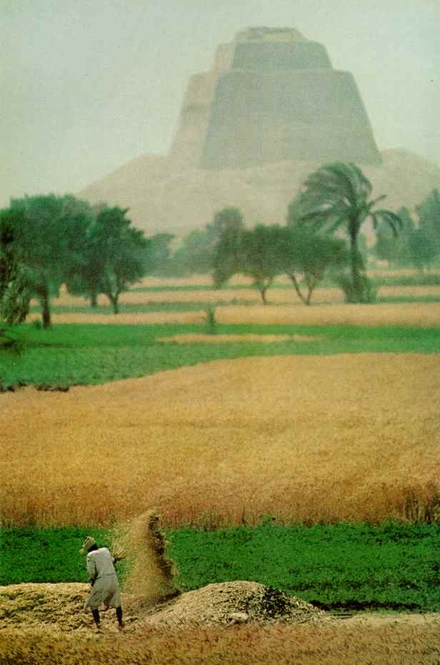 vintagenatgeographic:  Pyramid of Meidum near El Faiyum, Egypt National Geographic | March 1977
