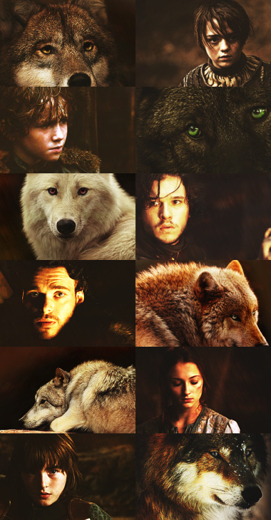 putthebastardonthethrone:  Source Game of Thrones Brasil @ facebook