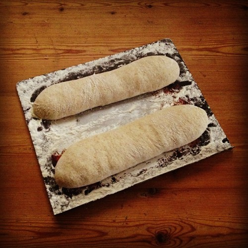 adamef:  #sourdough subs :: ready to go. #realbread