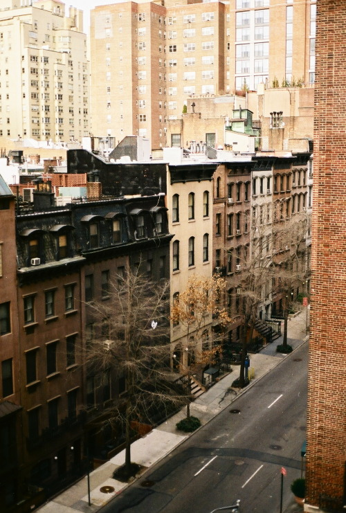 bunnnnny:  New York, March 2013.  excited to (hopefully) go back again this summer or fall!