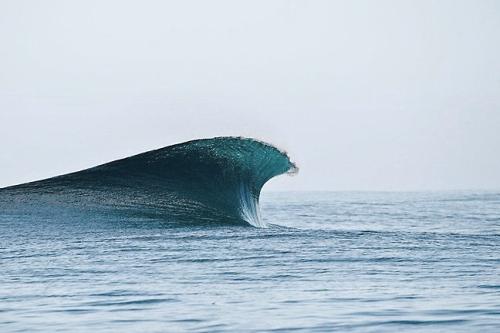 nevver:  Swell