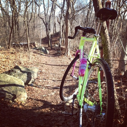Beautiful Day in the Woods in MA! #cyclocross #geekhousebikes