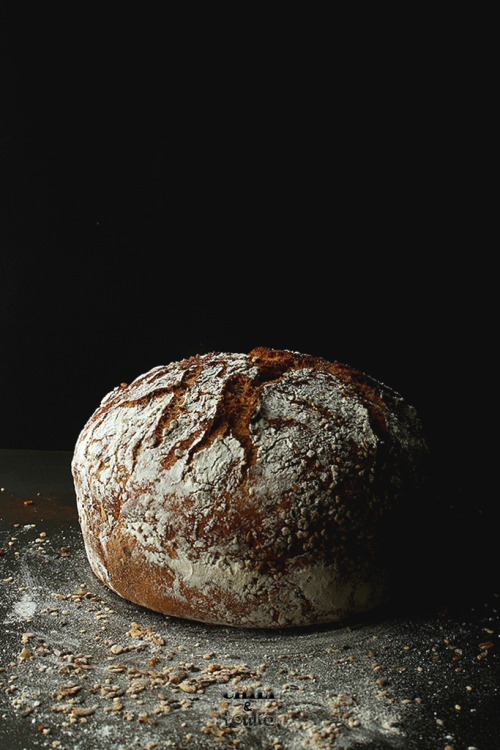 noperfectdayforbananafish:  Jim Lahey's Whole Wheat 18 hour bread / Chili & Tonka (by crummblle)