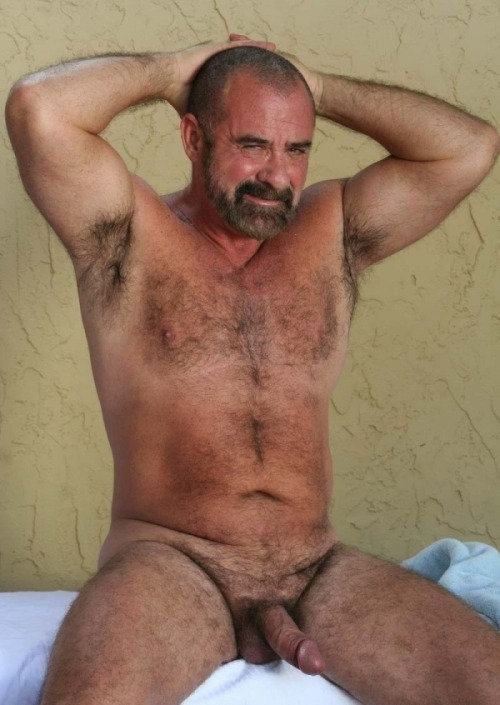 Polar bear gay hairy daddies