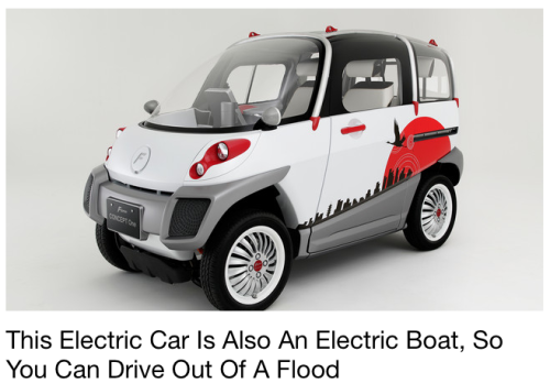 This tiny electric vehicle is a survivor: If there's a flood, the car can float to safety. Read More>