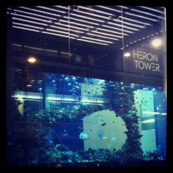 Big Aquarium in Bishopsgate Street (Heron Tower) #aquarium #blue #water #london #city #new #modern #cool #nice #nature