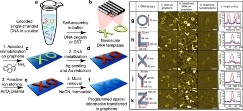 "MIT and Harvard Engineers Use ""DNA-Legos"" To Construct Graphene Nanostructures This news is a follow-up to an earlier post ""Harvard Researchers Create Self-Assembling Nano Bricks Made of DNA."" Engineers are now using  self-assembling DNA nanobricks as a scaffold to build nanostructures out of graphene.  The MIT and Harvard researchers are essentially taking these shapes and binding them to a graphene surface with a molecule called aminopyrine. Once bound, the DNA is coated with a layer of silver, and then a layer of gold to stabilize it. The gold-covered DNA is then used as a mask for plasma lithography, where oxygen plasma burns away the graphene that isn't covered. Finally, the DNA mask is washed away with sodium cyanide, leaving a piece of graphene that is an almost-perfect copy of the DNA template. So far, the researchers have used this process — dubbed metallized DNA nanolithography — to create X and Y junctions, rings, and ribbons out of graphene. Nanoribbons, which are simply very narrow strips of graphene, are of particular interest because they have a bandgap — a feature that graphene doesn't normally possess. A bandgap means that these nanoribbons have semiconductive properties, which means they might one day be used in computer chips. Graphene rings are also of interest, because they can be fashioned into quantum interference transistors — a new and not-well-understood transistor that connects three terminals to a ring, with the transistor's gate being controlled by the flow of electrons around the ring.  (via MIT and Harvard engineers create graphene electronics with DNA-based lithography 