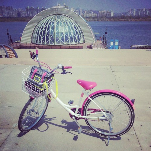 Bucket list CONQUERED! Turns out it'd just take a neon pink bike to make me learn how to ride one! (at 여의도공원 (Yeouido Park))