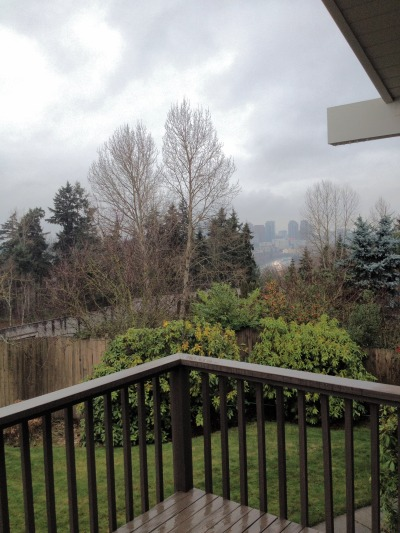 Bellevue, Washington, USA   submit your own morning window pic: http://thelearningbrain.tumblr.com/submit See the other Morning Windows: http://thelearningbrain.tumblr.com/tagged/MorningWindow