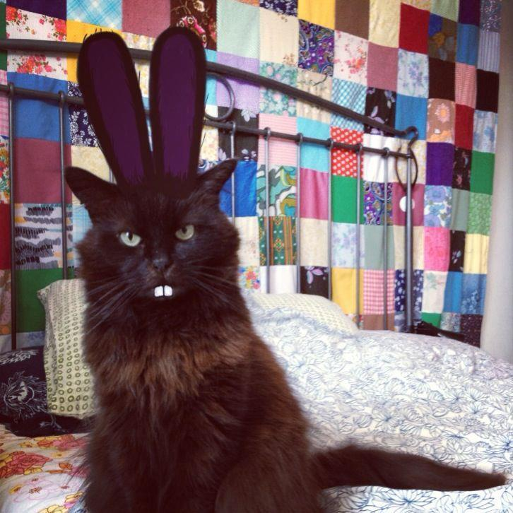 Happy Easter! Photo by ©Oscar the Grumpy Cat