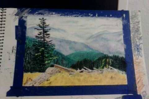 Misty mountains, fallen trees, one brave survivor. Done with Cray-Pas Expressionist oil pastels, so the color palette isn't the best. Seems like all my work is geared toward backgrounds lately. Building up the grassy area today, then I think I'm done