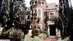 american horror story my edits television murder house *ahs asylum ahs: asylum american horror story asylum coven american horror story coven ahs: coven ahsedit ahs: murder house