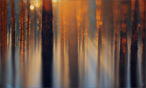 ray of light by Sandra Bartocha on Flickr.