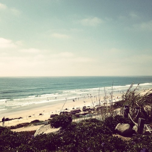 Del Mar Beach. #sandiego  (at Del Mar Beach)