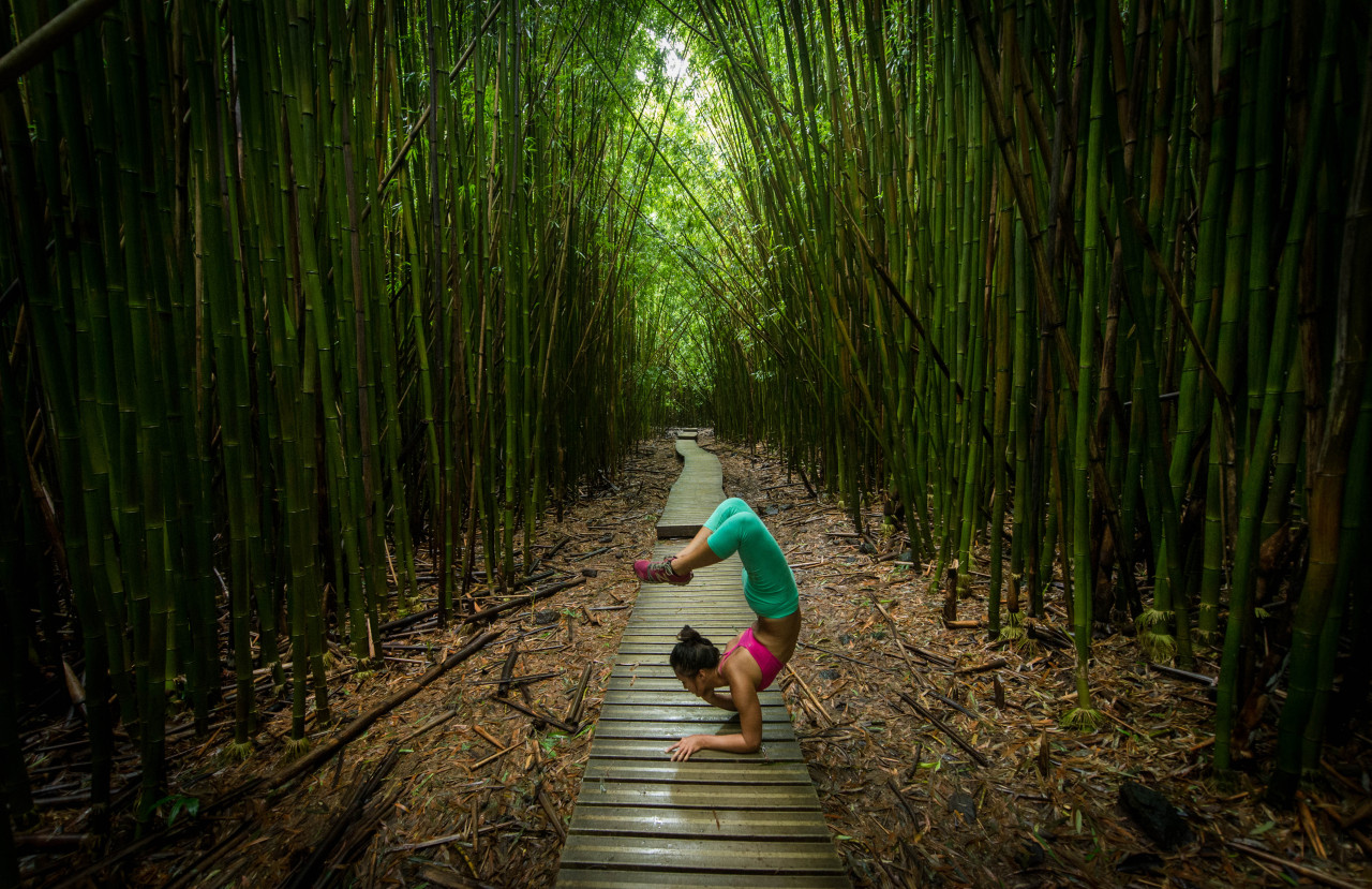 Loving this bamboo forest Vrschikasana Variation http://www.facebook.com/CamilliaLeeYoga