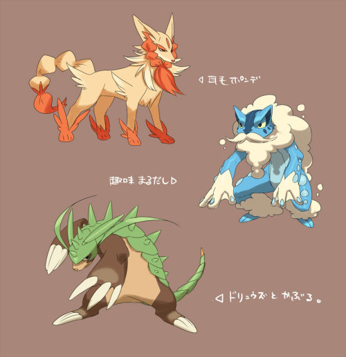 possible evolved forms of the new starters?