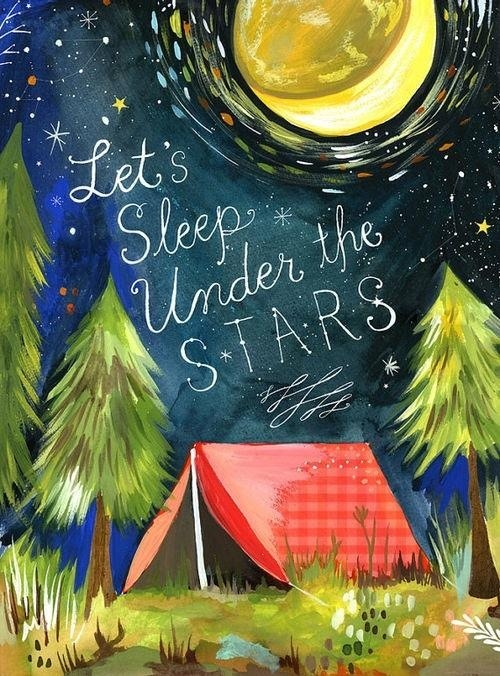Let's sleep under the stars!***