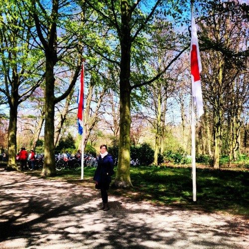Japanese festival  (at Landgoed Clingendael)