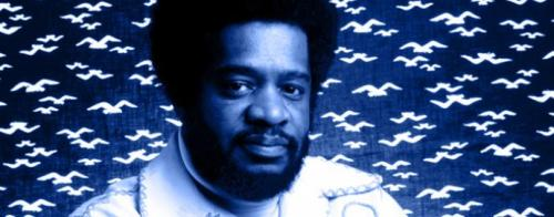 Donald Byrd A couple of nice tributes to the recently departed Donald Byrd — a previously unreleased live gig from 1973 and a two-part Gilles Peterson mix covering both the trumpeter's acoustic and electric years. The live show is particularly fun, as Byrd and band give the creamy Black Byrd material an altogether more aggressive treatment. It's not exactly On The Corner, but occasionally it leans in that direction.